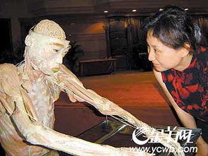 人体构造图-一个展览争议中走入羊城