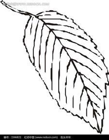 花草树木简笔画-一片叶子EPS素材免费下载 编号1546821 红动网