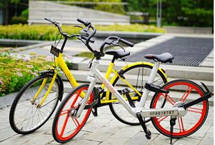 摩拜单车为什么能在共享单车拔得头筹