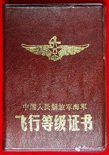 ...一级和特级.需要说明的是,不同的机型的飞行等级评定标准并不相...