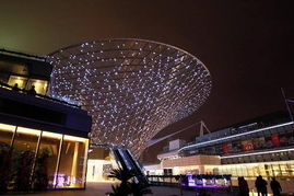 ...上海世博会后续开发利用的首个大型改建项目——