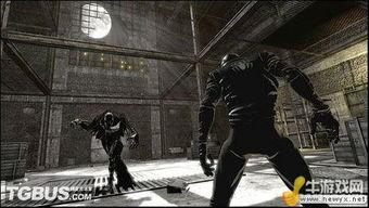 夜幕下的影之刺客,如果单拿此形... 杀手   形象.Noir攻击力和防御力...