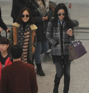 刘亦菲与江一燕现身机场 热聊不甩陈嘉上
