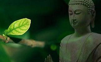 ...道 弟子规 等外道与佛法之间的区别吗