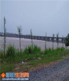 祁阳水电大桥开闸泄洪和浯溪公园观赏 Discuz