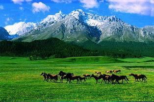 南山牧场 一 日 游