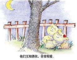 花猪凄美的爱情故事 真是催人泪下啊
