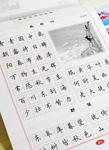 内容涉及:生字、组词、造句、近义词、反义词、课文片段、古诗词等...