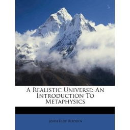 A Realistic Universe An Introduction to Metaphysics