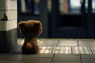 孤独的 ...,单身汉 的下载地址谁有