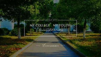 我的大学,我的青春