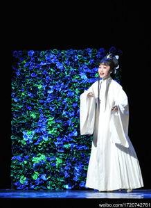 天花雨中走来,化蝶,不似传统版的穿上蝶衣,舞作蹁跹.而是让风力...