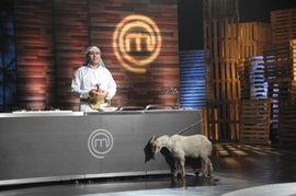 阿拉伯王子驾到 顶级厨师 洋女婿也来凑热闹