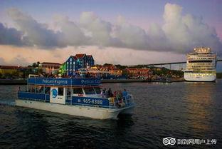 ...elican Boat Trips-威廉斯塔德户外活动