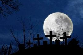 宇宙之墓-月球墓地:著名天文学家尤金-休梅克一生富有传奇色彩,他的遗嘱是...