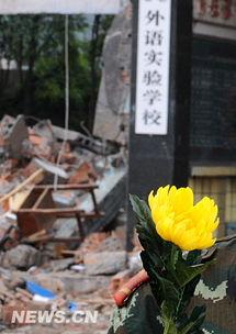 ...警战士胸前插着菊花在东汽集团英语实验学校废墟前静默致哀.    摄 ...
