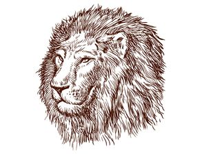 狮子肖像素描矢量素材