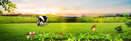 牧场背景素材 牧场高清背景下载 千库网
