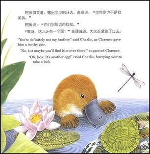 找朋友系列神奇立体书 中英文对照 共4册 精装