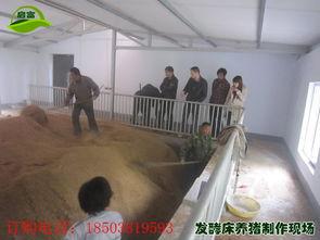 养猪发酵床菌种在哪买,养猪发酵床菌种在哪买生产厂家,养猪发酵床...
