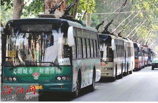 货车挂断电车专用线 77辆公交车停运