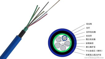 室外阻燃光缆型号mgtsv型号价格天津16芯单模现货产品的资料