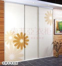 壁柜隔断样式-...柜门 演绎家居花样年华 一 -2009中国整体衣柜十大品牌评选