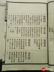 重庆时时彩四星综合走势图