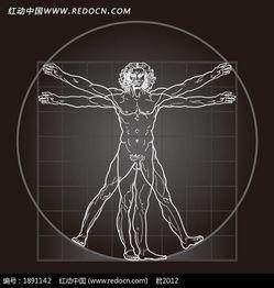 人体构造素描图矢量字体下载 1891142