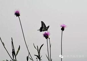 伫望逝水-九、《蝶恋花》柳永   伫倚危楼风细细,望极春愁,黯黯生天际.   草...
