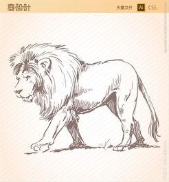 狮子素描矢量图图片