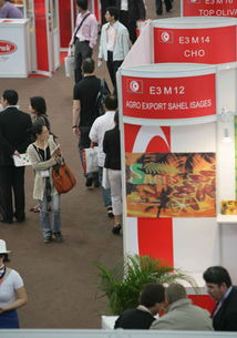 China(Shenzhen)-The 10th Shenzhen International Boat Show