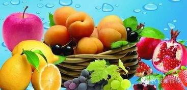 中国农业展望大会发布农产品未来十年展望报告