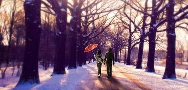 浪漫唯美的爱情诗歌 雪
