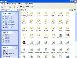 QQ秀聊天室里想要 跑天上去 要删除什么文件,教我
