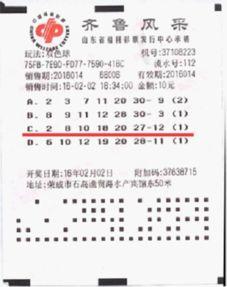 好彩头彩票如何使用电子券购彩?