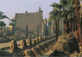 马的史诗巨作《伊利亚特》中的主题.曾是埃及女王哈特谢普苏特执政...