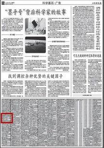 上海科技报B2版面-执照公章丢失 王宝强工作室发遗失声明