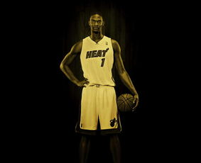 NBA众巨星超炫写真大片 科比詹姆斯比帅