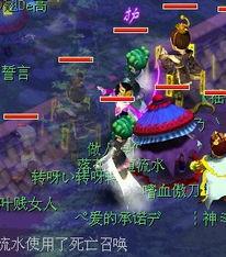 标题 颠峰对绝 天元状元的诞生 -游戏录像视频在线观看下载站