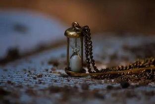 感恩   感激伤害你的人,因为他磨练了你的心志;   感激欺骗你的人,...