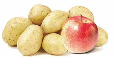 """长芽的土豆含有龙葵碱毒素,能导致人食物中毒.美国""""生活百事网""""..."""