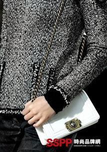 ...ruise系列香奈儿包包 美丽包包香奈儿官方网名品Chanel新款包包