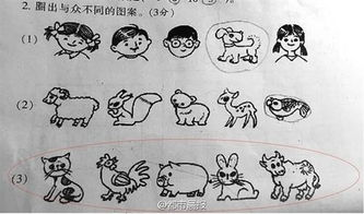 ...出一道数学题:猫、鸡、猪、兔、牛这五图案中,哪个图案与众不同...