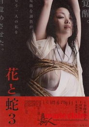 花与蛇系列-爱之亡灵 导演大岛渚病逝 盘点那些日本情色片 5