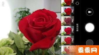 重生之珠光宝妻-2月13日,小米正式发布了新款红米Note4千元手机,并于2月14日情节...