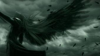 二翼天使,四翼天使,六翼天使,八翼天使,十二翼天使图片