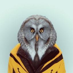 ...推出了一个名为zoo book的摄影集,以动物为主体,映射人类迷恋时...