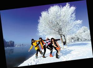 场   哈尔滨太阳岛国际雪雕艺术博览会上的大型雪雕   布满雾凇的吉林...