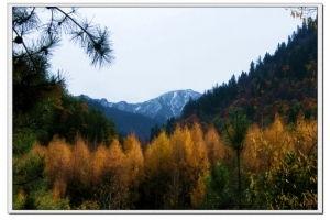 仙神藏-成都去雅安宝兴 神木垒 硗碛藏乡 五仙湖 彩林红